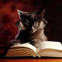 Hypnose et vitesse de lecture : Avez-vous entendu parler de l'hypno-lecture ?
